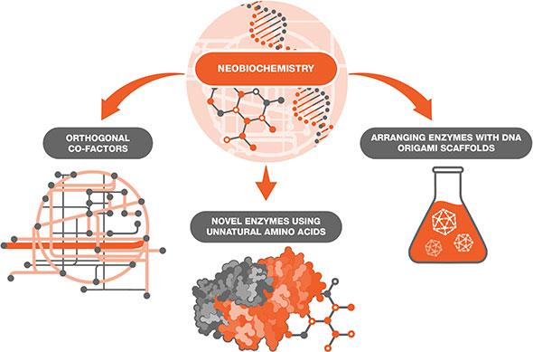 Neobiochemistry