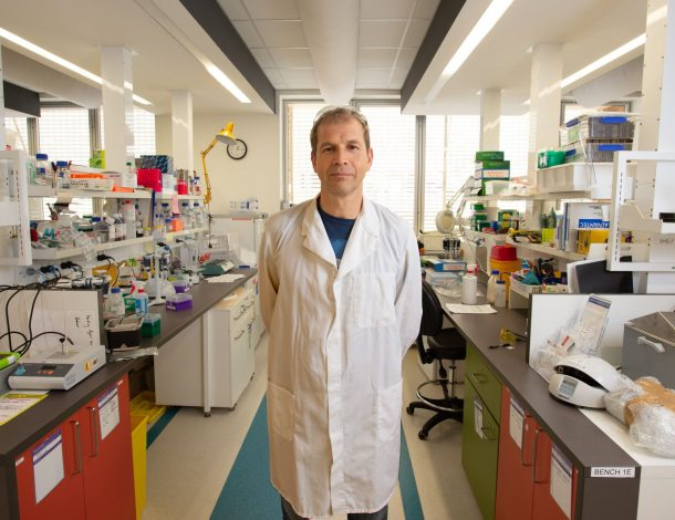 Synthetic Biology Helps Reveal Coronavirus Outbreak 20,000 Years Ago